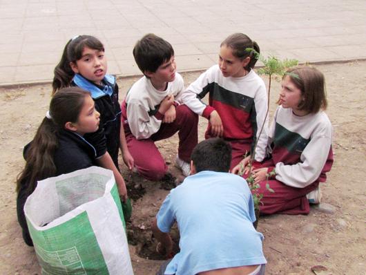 colegio_bosque_3