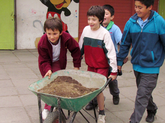 colegio_bosque_8