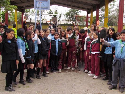colegio_bosque_9